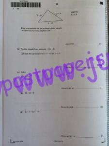 IMG_3556